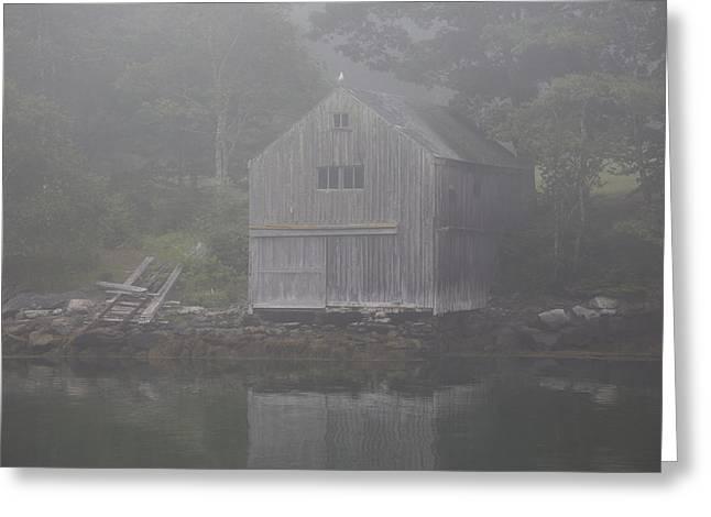 Boathouse In Fog  New Harbor, Maine Greeting Card by Lynn Stone