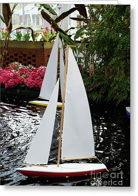 Boats At Phipps Conservatory Greeting Card