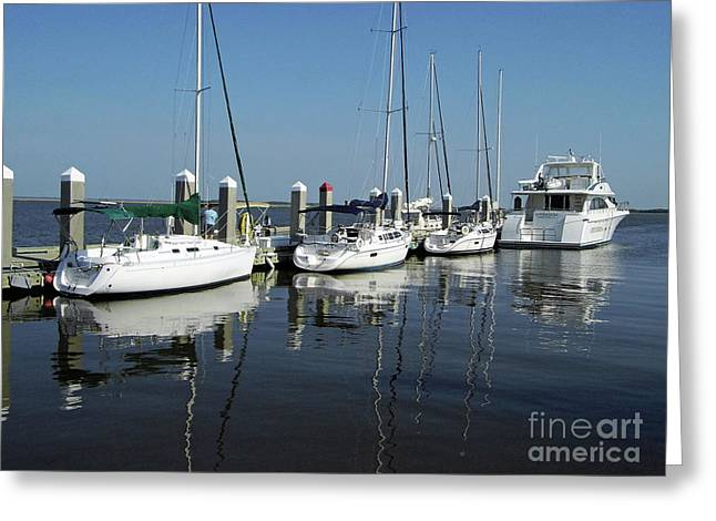 Boats In A Row Greeting Card by D Hackett