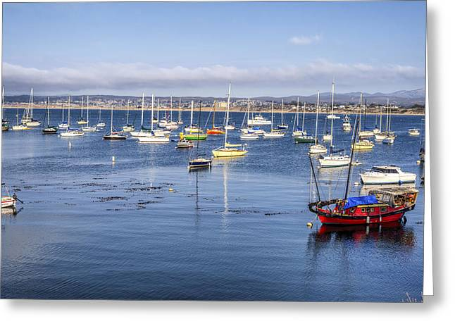 Colorful Monterey Bay Greeting Card