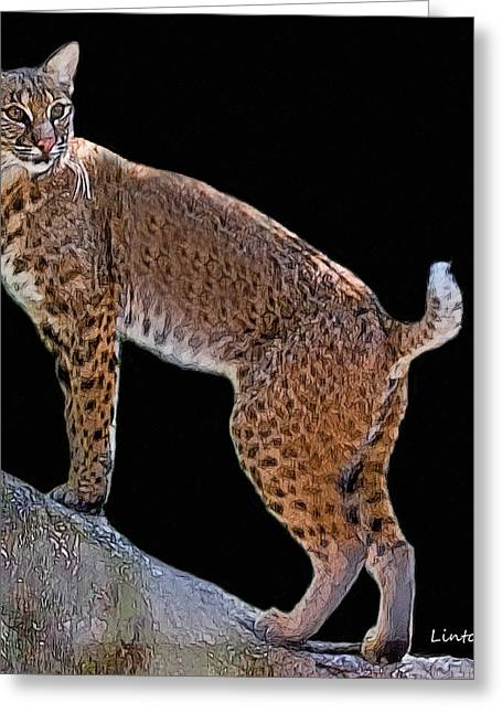 Bobcat 2 Greeting Card by Larry Linton