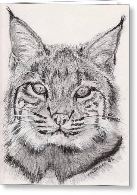 Bobcat Greeting Card by Marqueta Graham
