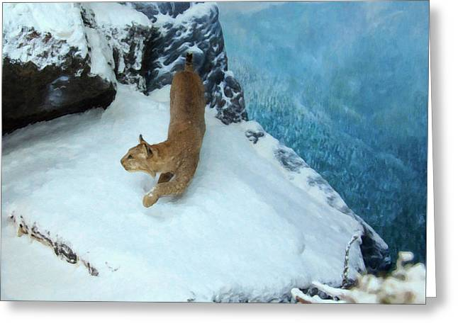 Bobcat On A Mountain Ledge Greeting Card by Chris Flees