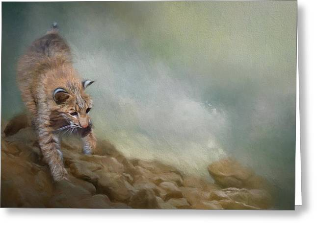 Bobcat On The Rocks Greeting Card