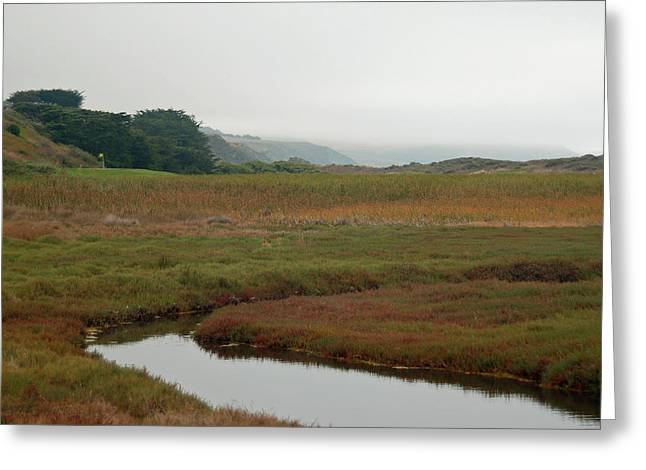 Bodega Bay Beauty Greeting Card by Suzanne Gaff