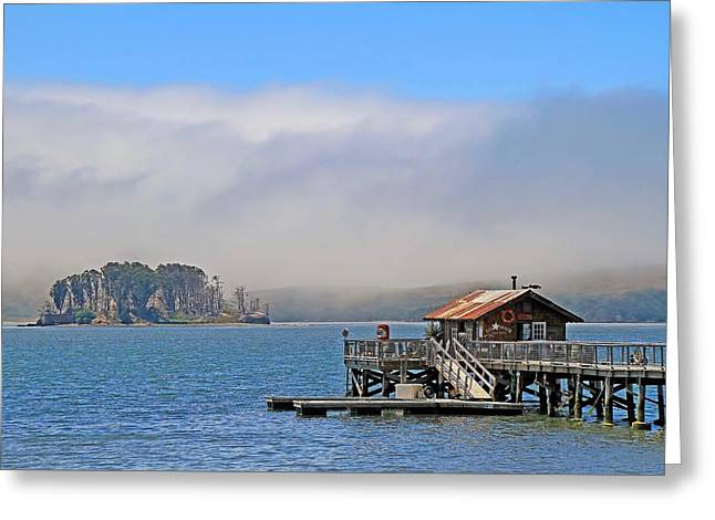 Greeting Card featuring the photograph Bodega Bay by Donna Kennedy