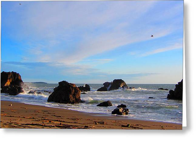 Bodega Bay Sunset Greeting Card