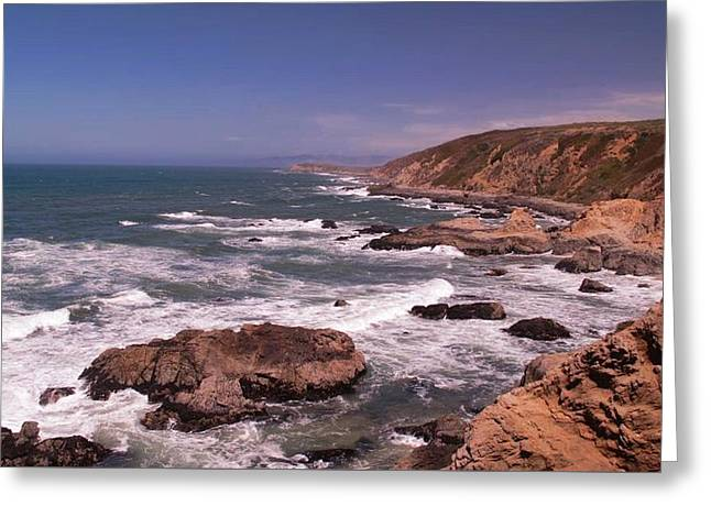 Bodega Head Greeting Card