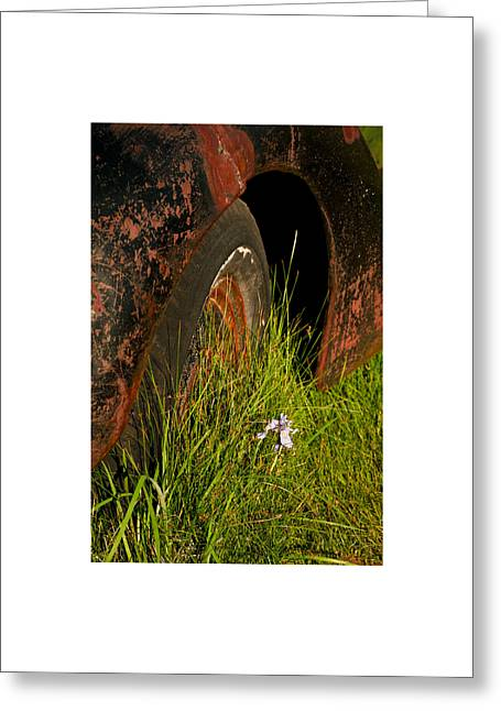 Greeting Card featuring the photograph Bodie 13 by Catherine Sobredo