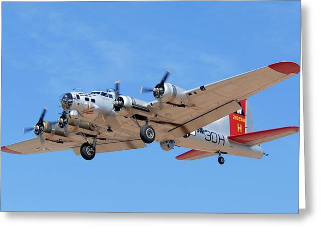 Boeing B-17g Flying Fortress N5017n Aluminum Overcast Landing Deer Valley Airport March 31 2011 Greeting Card