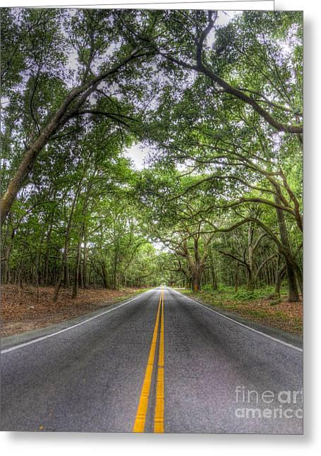 Bohicket Road Johns Island South Carolina Greeting Card by Dustin K Ryan