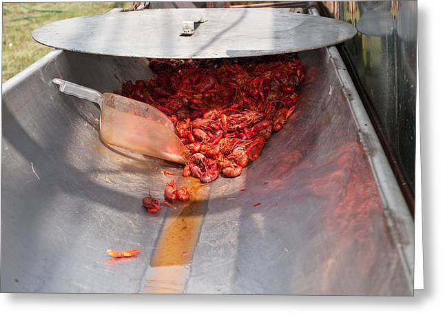 Boiled Crawfish Greeting Card