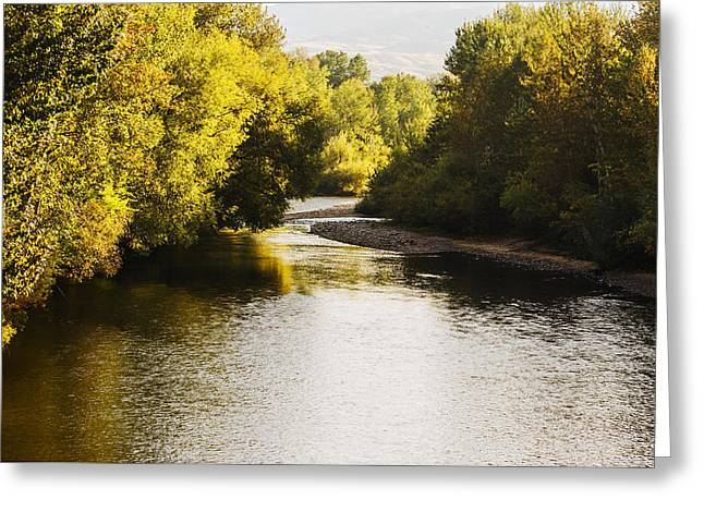 Boise River On A Fine Autumn Morning Greeting Card by Vishwanath Bhat