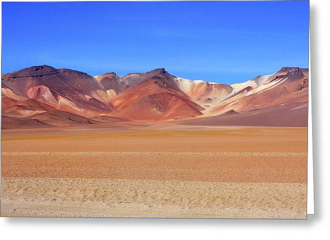 Greeting Card featuring the photograph Bolivian Altiplano  by Aidan Moran