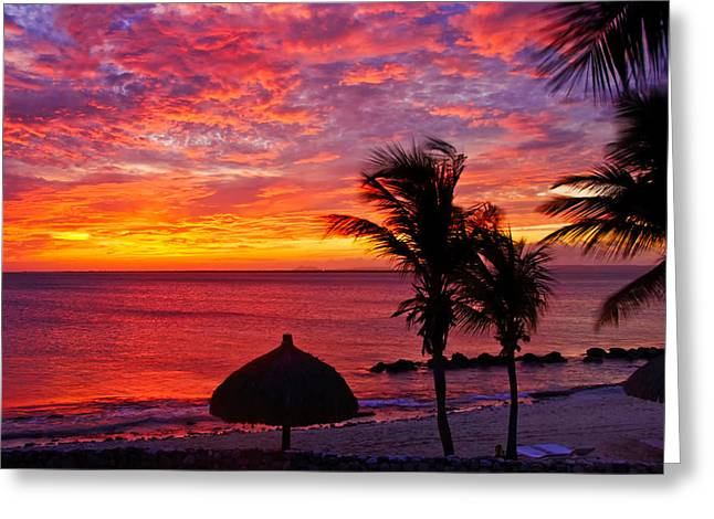 Bonaire Sunset 1 Greeting Card by Stephen Anderson