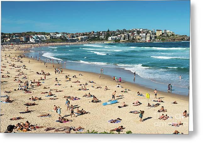 Bondi Beach Greeting Card by Andrew Michael