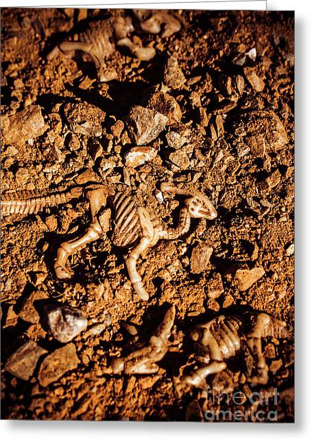 Bones From Ancient Times Greeting Card