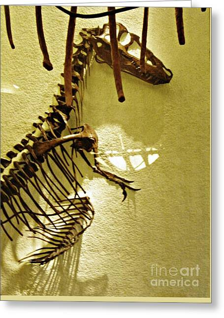 Bones Tell Stories Greeting Card by Sarah Loft