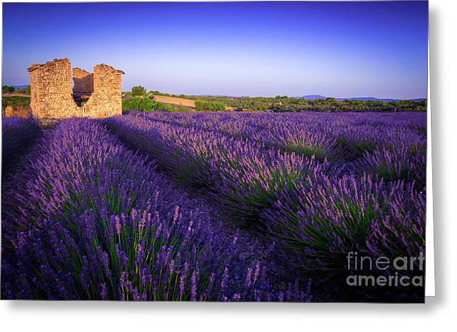 Bonjour Valensole Greeting Card