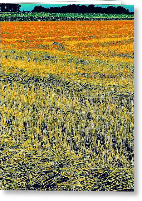 Bonneuil Harvest Greeting Card by Terry w Scales