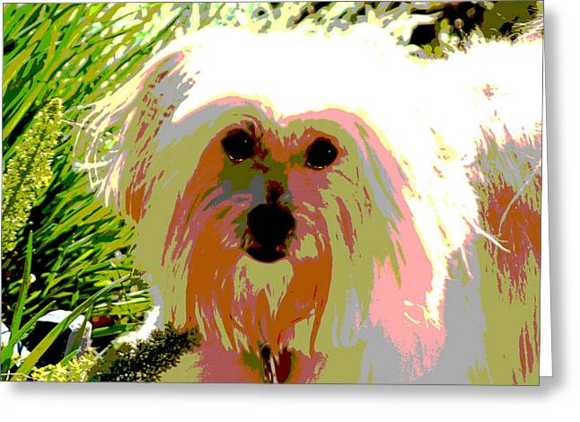 Bonnie In Color Greeting Card by Ellen Lerner ODonnell