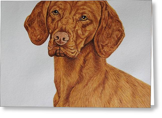 Boomer The Vizsla Greeting Card