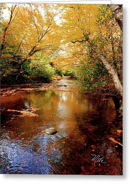 Greeting Card featuring the photograph Boone Fork Stream by Meta Gatschenberger