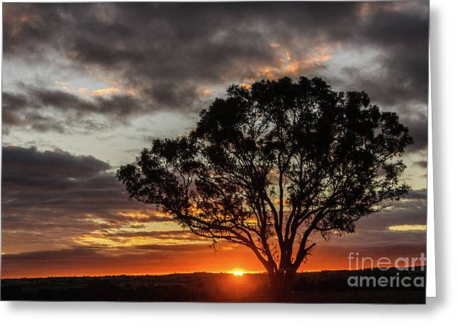 Boorowa Sunset Greeting Card