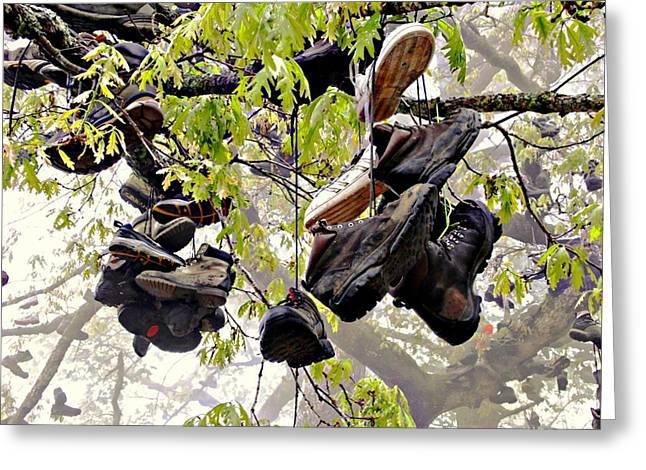 Boot Tree At Neels Gap Greeting Card