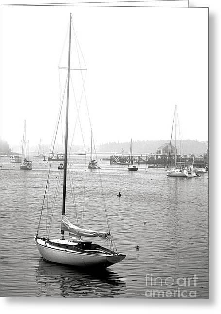 Boothbay Harbor Memories Greeting Card