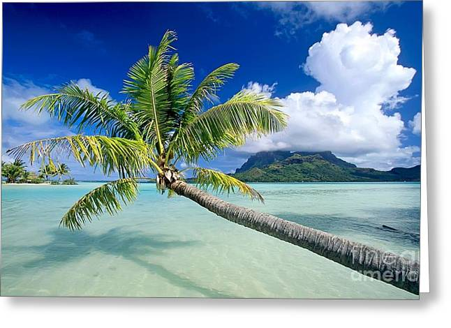Bora Bora Beach Greeting Card