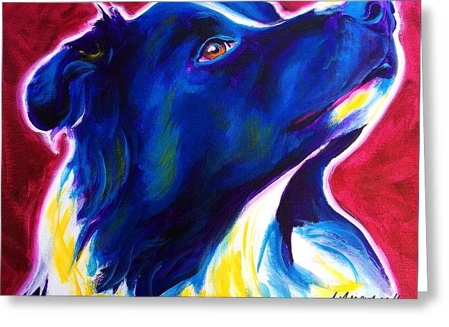 Border Collie - Bright Future Greeting Card