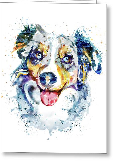 Border Collie  Greeting Card by Marian Voicu