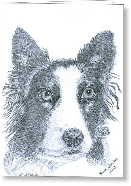 Border Collie Greeting Card by Yvonne Johnstone