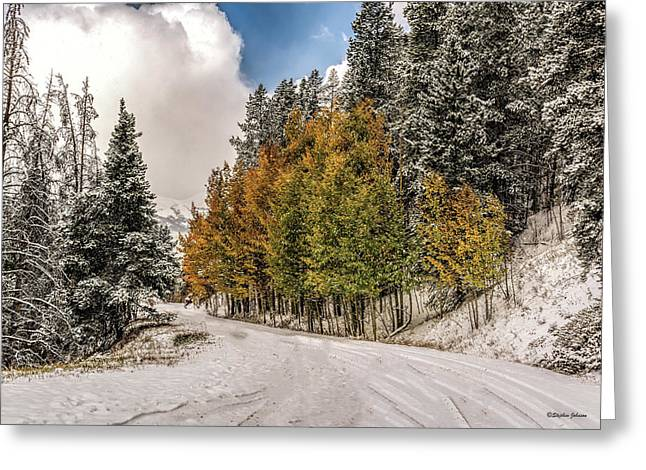 Boreas Pass Road Aspen And Snow Greeting Card