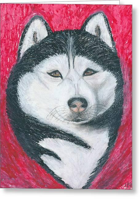 Huskies Drawings Greeting Cards - Boris the Siberian Husky Greeting Card by Ania M Milo