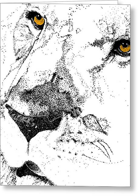 Born Free Art Greeting Card by JAMART Photography