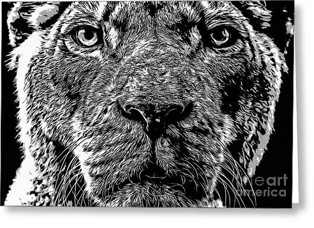 Born Free Lion Greeting Card by Edward Fielding