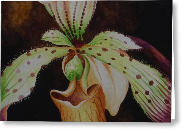 Borneo Orchid P Lebaudyanum Greeting Card by Edoen Kang