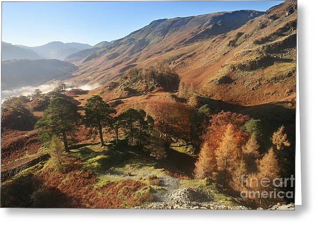Borrowdale From Castle Crag Greeting Card by Bryan Attewell