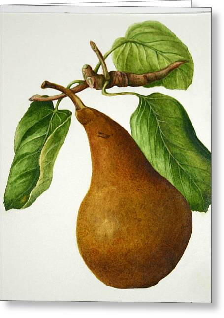 Greeting Card featuring the painting Bosc Pear by Margit Sampogna