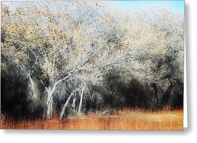 Bosque Del Apache In January Greeting Card