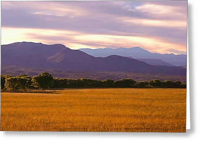 Bosque Del Apache National Wildlife Greeting Card by Panoramic Images