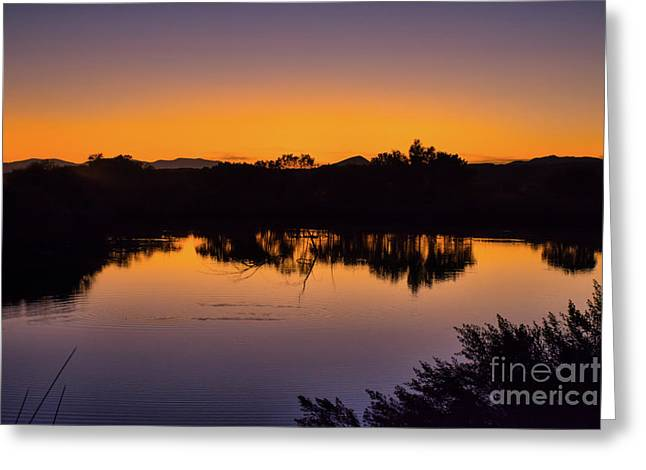 Bosque Del Apache Sunset Greeting Card