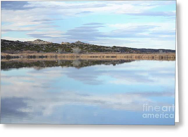 Greeting Card featuring the photograph Bosque Desert Lake by Andrea Hazel Ihlefeld