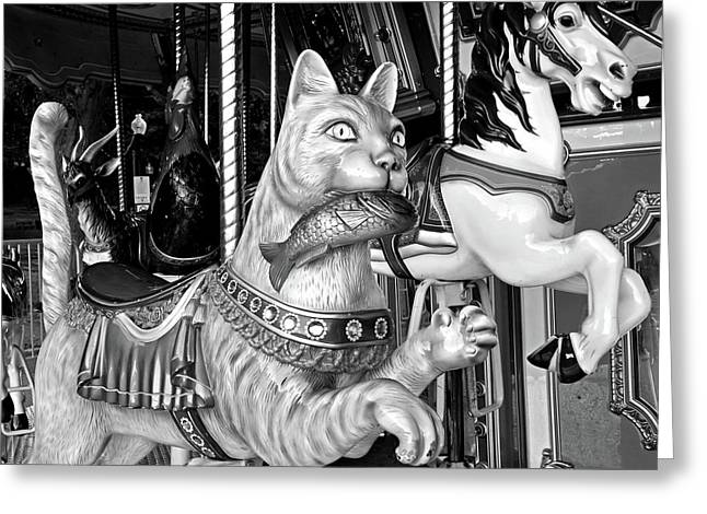 Boston Common Merry Go Round Cat Boston Ma Black And White Greeting Card