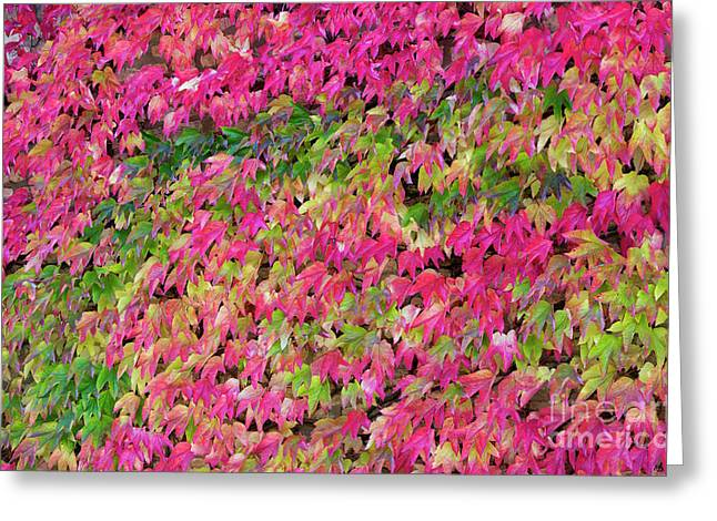 Boston Ivy In Autumn Greeting Card by Tim Gainey