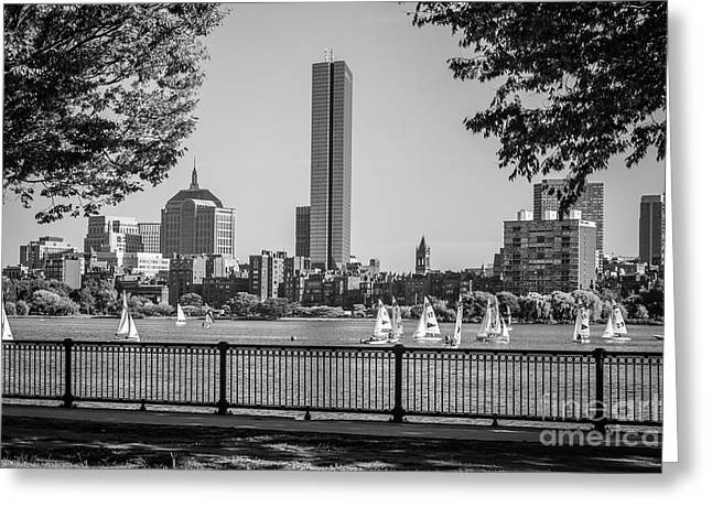Boston Skyline Sailboats Black And White Photo Greeting Card