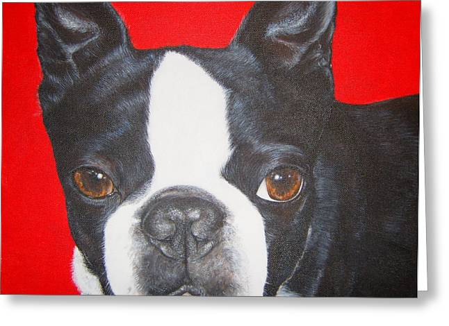 Boston Terrier Greeting Card by Keran Sunaski Gilmore