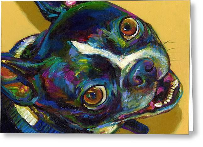 Boston Terrier Greeting Card by Robert Phelps